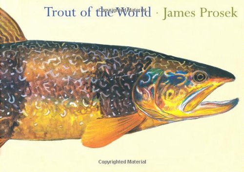 9781584791522: Trout of the World