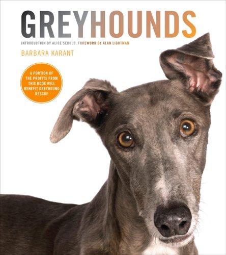 9781584797357: Greyhounds