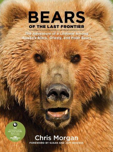 Bears of the Last Frontier (Hardcover): Chris Morgan