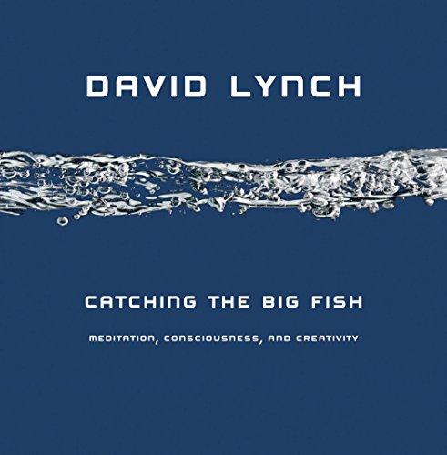 Catching the Big Fish: Meditation, Consciousness, and Creativity: Lynch, David