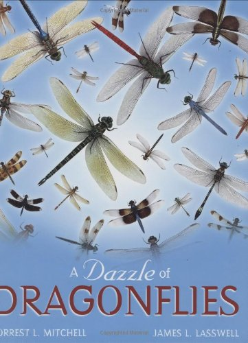9781585444595: A Dazzle of Dragonflies