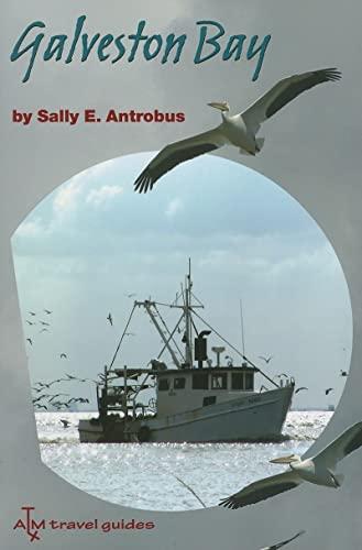 9781585444618: Galveston Bay (Gulf Coast Books, sponsored by Texas A&M University-Corpus Christi)