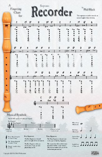 9781585605446: INSTRUMENTAL POSTER For Recorder