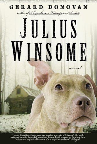 9781585679416: Julius Winsome: A Novel