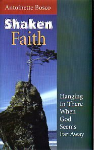 9781585951383: Shaken Faith: Hanging in There When God Seems Far Away