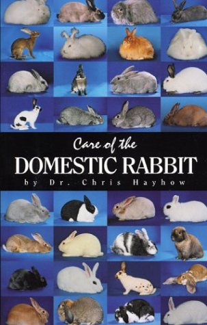 Care of the Domestic Rabbit: Hayhow, Chris