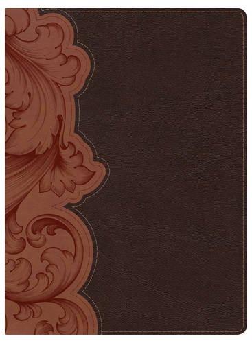 KJV Study Bible, Dark Umber/Sienna LeatherTouch Indexed