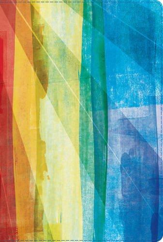 9781586409944: RVR 1960 Biblia de Estudio Arco Iris, multicolor símil piel (Spanish Edition)