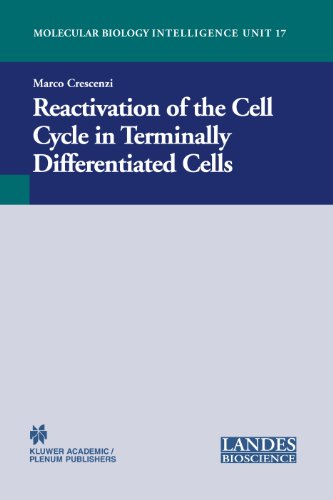 9781587060717: Reactivation of the Cell Cycle in Terminally Differentiated Cells (Molecular Biology Intelligence Unit, 17)