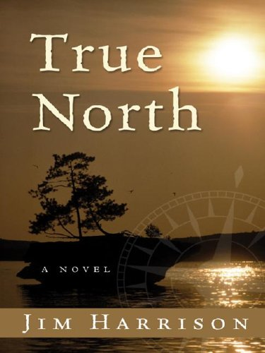 9781587247361: True North (Wheeler Large Print Book Series)