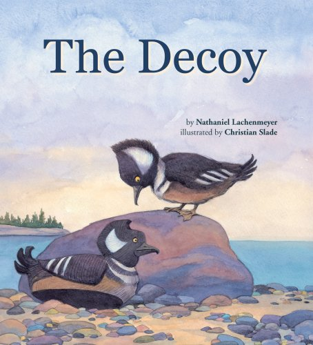 The Decoy: Nathaniel Lachenmeyer