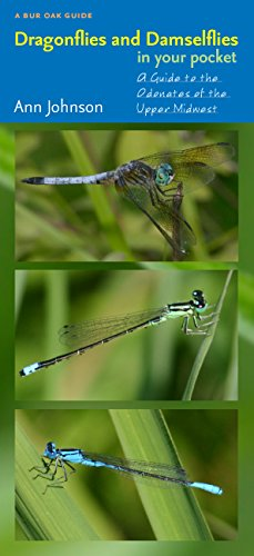 9781587297861: Dragonflies and Damselflies in Your Pocket: A Guide to the Odonates of the Upper Midwest (Bur Oak Guide)