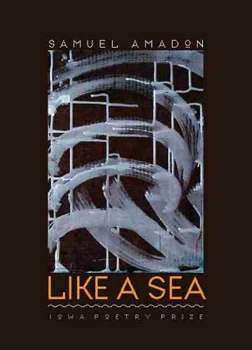 9781587298608: Like a Sea (Iowa Poetry Prize)