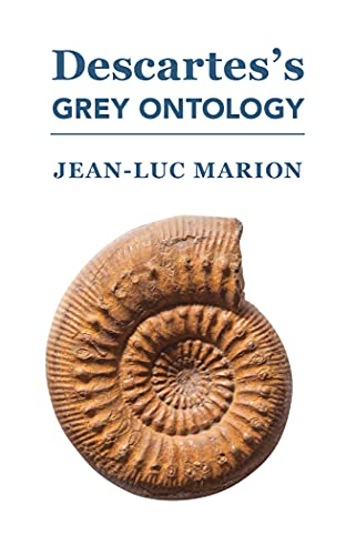9781587311765: Descartes's Grey Ontology: Cartesian Science and Aristotelian Thought in the Regulae