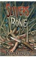 9781587670947: Slivers of Bone
