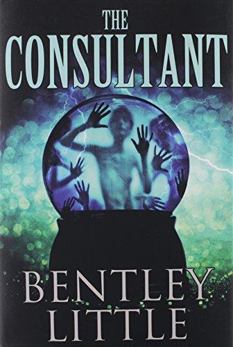 9781587675010: The Consultant