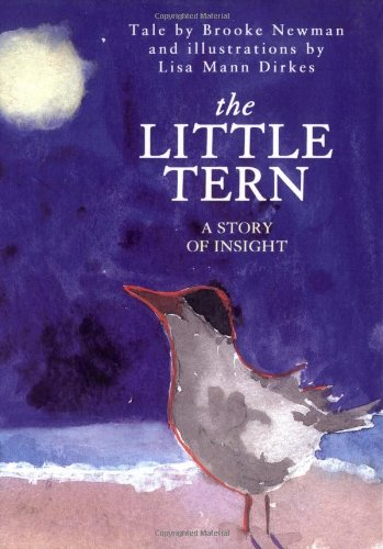 The Little Tern: A Story of Insight: Brooke Newman
