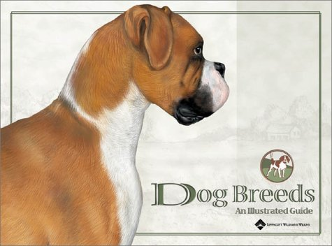 Dog Breeds : An Illustrated Guide: Liana Bauman; Lik