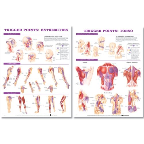 9781587796210: Trigger Point Chart Set