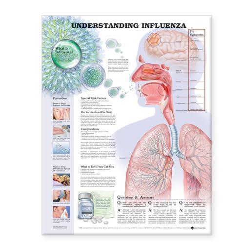 9781587798863: Understanding Influenza