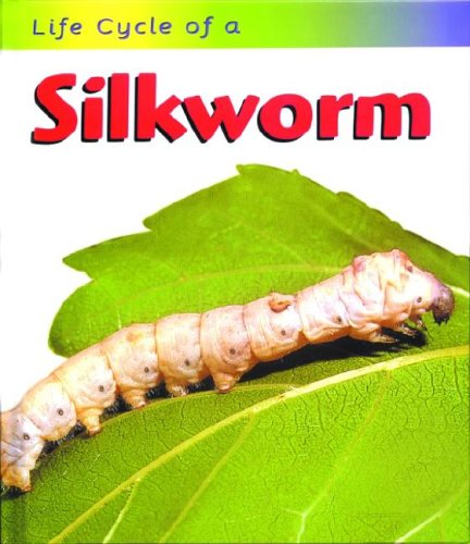 9781588103963: Life Cycle of a Silkworm