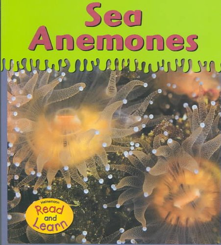 9781588107176: Sea Anemones (Ooey-Gooey Animals)