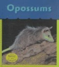 9781588108807: Opossums (What's Awake?)