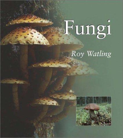 9781588340825: Fungi (Natural World Series)