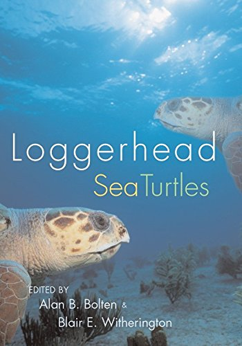 Loggerhead Sea Turtles: Bolten, Alan B. & Blair E. Witherington, ed.