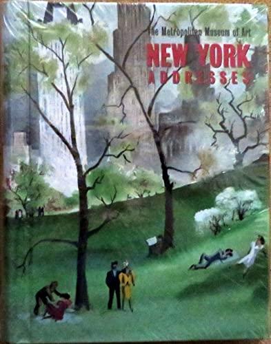 9781588392091: The Metropolitan Museum of Art New York Address Book