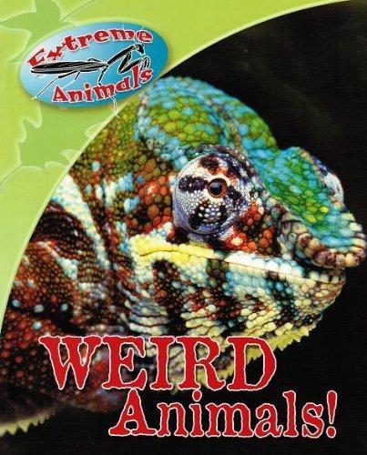 9781588652683: Weird Animals! (Extreme Animals)