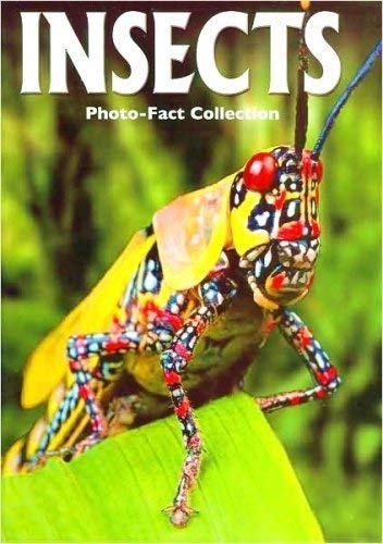9781588655028: Insects (Photo-Fact Collection Series)
