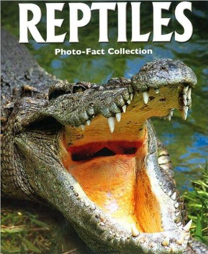 Reptiles.: Robert Matero