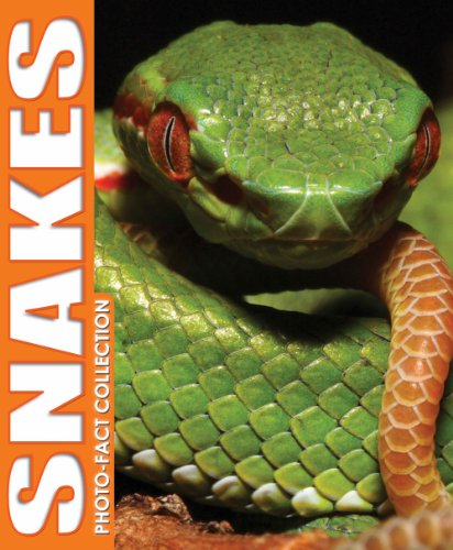9781588656704: Snakes Photo Fact Collection