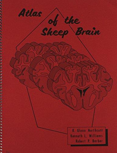 9781588746955: Atlas of the Sheep Brain