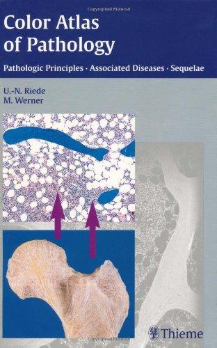 9781588901170: Color Atlas of Pathology Pathologic Principles, Associated Diseases, Sequelae