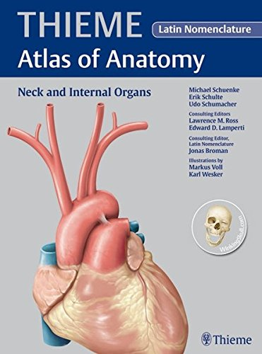 9781588904447: Neck and Internal Organs - Latin Nomencl. (THIEME Atlas of Anatomy)