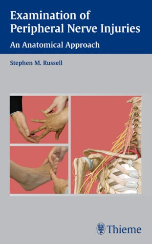 9781588904836: Examination of Peripheral Nerve Injuries: An Anatomical Approach