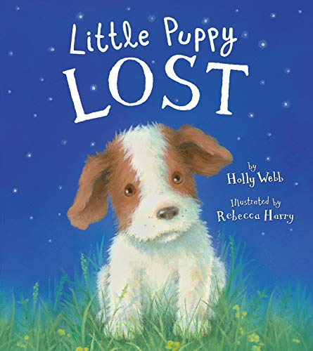 Little Puppy Lost: Holly Webb