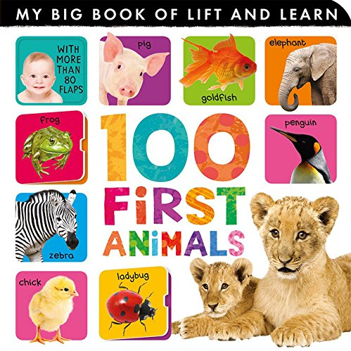 9781589256088: 100 First Animals (My Big Book of Lift and Learn)