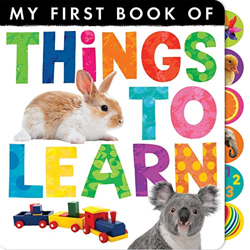 9781589256354: Things to Learn (My First Book of)
