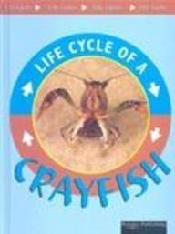 9781589527041: Crayfish (Life Cycles)