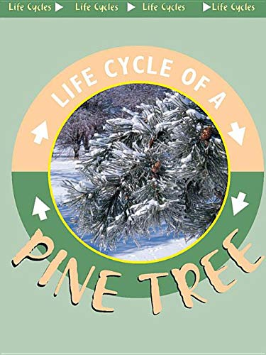 9781589527065: Pine Tree (Life Cycles.)