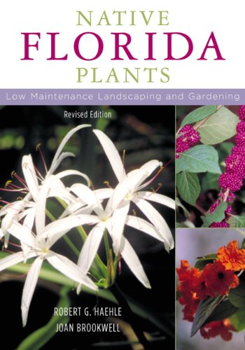 9781589790513: Native Florida Plants: Low Maintenance Landscaping and Gardening