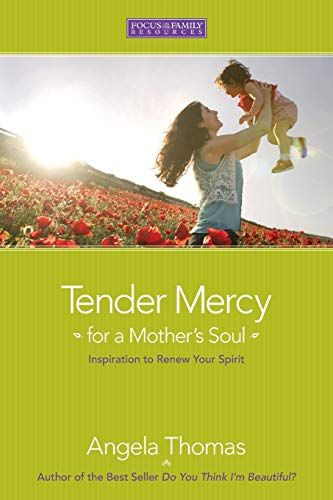 9781589973084: Tender Mercy for a Mother's Soul: Inspiration to Renew Your Spirit