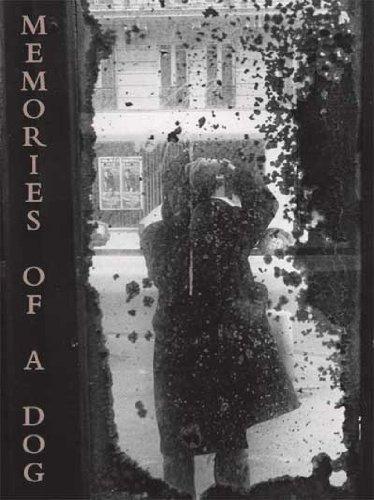 Memories of a Dog: Daido Moriyama