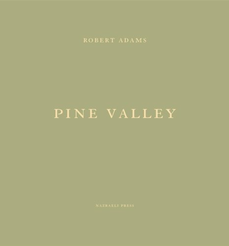 9781590051009: Pine Valley
