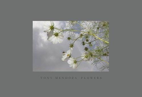 Flowers: Mendoza, Tony