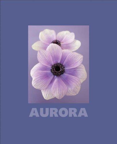 Aurora: Ron Van Dongen