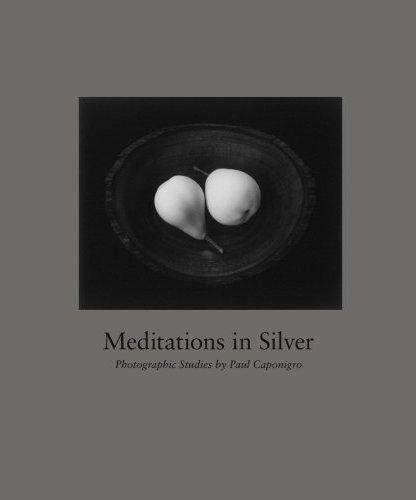 9781590052266: Meditations In Silver: Photographic Studies By Paul Caponigro